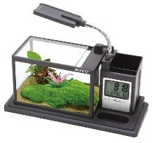 BOYU Desk top LED Holder Aquarium