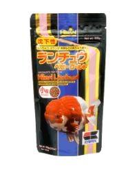 Hikari Lionhead