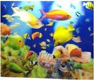 Nano Marine Aquarium 3D Background Posters