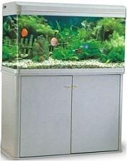 RS Glass B Series Aquarium with Cabinet