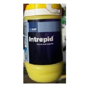 BASF Intrapid Insecticide