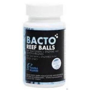 Fauna Marin Bacto Reef Balls