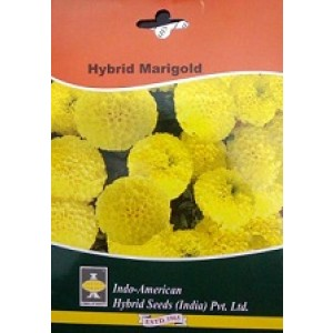 Hybrid Marigold Flower Seeds