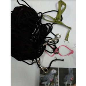 Medium Sized Bird Collar And Leash Set