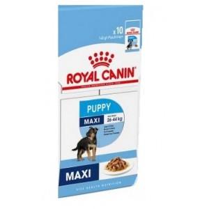 Ten Pack Royal Canin Maxi Puppy Wet Pouch