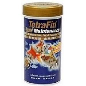 Tetra Fin Gold Maintenance