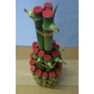 Three Layer Lucky Bamboo