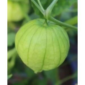 Tomatillo Green Seeds