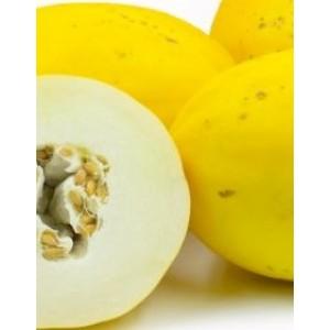 Yellow Rind Muskmelon